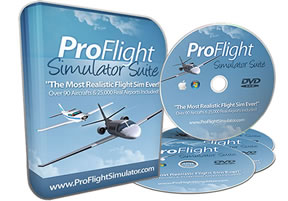 Flight Simulation Game